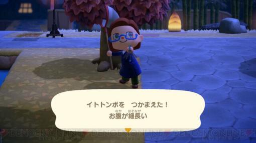 トンボだって、オケラだって! 11月に捕まえたいムシを紹介【あつ森日記#157】