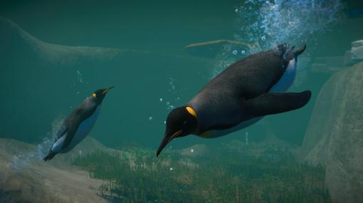 動物園経営シミュレーション『プラネット ズー』にペンギンなどの水棲動物を追加する新DLCが12月8日に発売へ。同日には本編の無料アップデートも予定